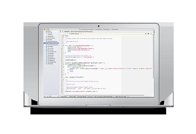 Diseño, creacion, programacion de paginas web internet en chihuahua